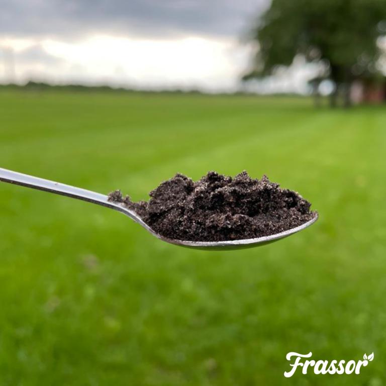 Eén theelepel grond bevat meer levende organismen dan er mensen op de wereld zijn.